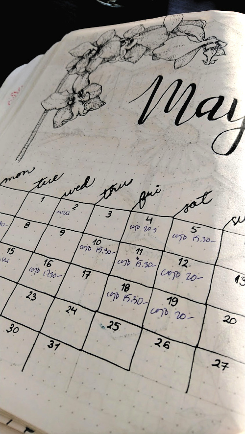 Bullet journal May monthly view template
